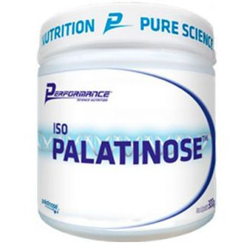 ISO PALATINOSE - 300g - PERFORMANCE NUTRITION
